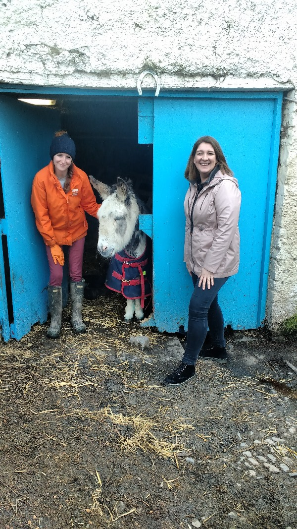 ANNOUNCEMENTS: Nua Healthcare Outreach Programme creates volunteering partnership with My Lovely Horse Rescue