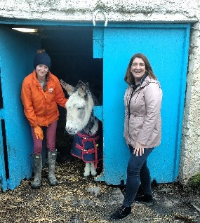 Nua Healthcare Outreach Programme creates volunteering partnership with My Lovely Horse Rescue